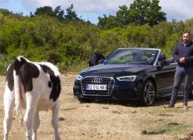Audi A3 2.0 TFSI cabriolet restylée