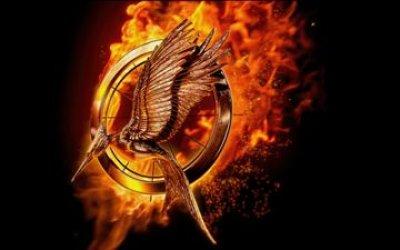 Hunger Games – La Révolte : Partie 2 - teaser - VOST - (2015)