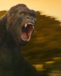 Secrets de tournage : Kong Skull Island