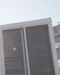 Black Panther : des personnages importants de retour !
