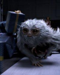 Secrets de tournage : Les Animaux fantastiques