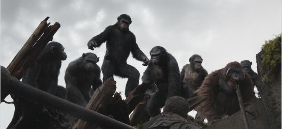 Box-office : Les singes envahissent le podium