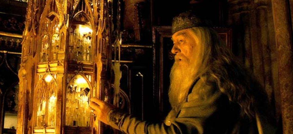 Animaux fantastiques : l'homosexualité de Dumbledore enfin assumée ?