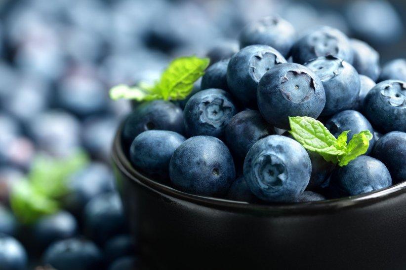 """La myrtille : un """"super-fruit"""" qui ralentit le vieillissement et améliore la vision nocturne."""