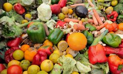 Le fléau du gaspillage alimentaire