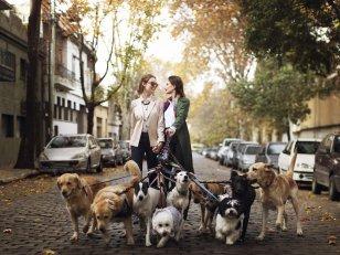 10 sites qui ont du chien !