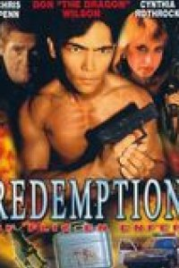 Redemption : Un flic en enfer