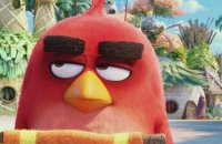 Angry Birds - Le Film - Extrait 3 - VF - (2016)