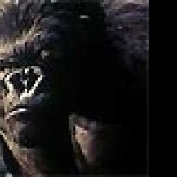King Kong - Extrait 5 - VF - (2005)
