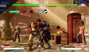 Street Fighter V - Chun-Li Official Character Guide