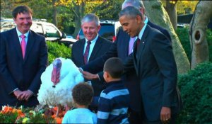 Barack Obama gracie une dinde pour Thanksgiving