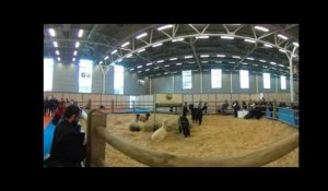 Salon International de l'Agriculture 2017 - VIDEO 360° - MAXPPP