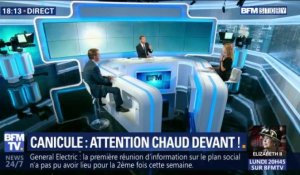 Canicule : attention chaud devant ! (2/2)