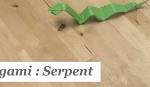 Origami : Comment faire un serpent en papier ? - HD