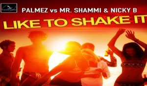 Palmez vs. Mr. Shammi & Nicky B - I Like to Shake It