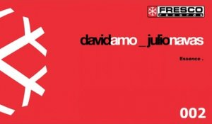 Julio Navas, David Amo - Essence (Original Mix)
