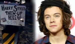 "One Direction Fans Create ""Shrine"" to Harry Styles' Roadside Vomit"