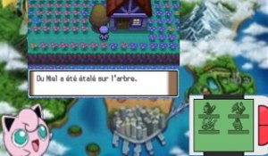 pokemon bloody platinium (27/06/2015 22:42)