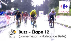 Buzz du jour / Buzz of the day - Étape 12 (Lannemezan > Plateau de Beille) - Tour de France 2015
