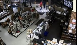 Braquage d'une boutique d'armes à Houston