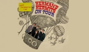 The Herman's Hermits - Silhouettes