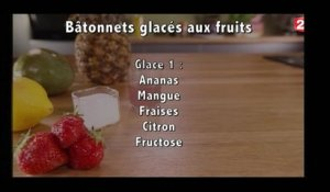 Gourmand - Bâtonnets glacés aux fruits - 2016/08/13
