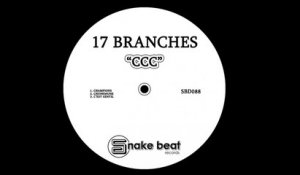 17 Branches - Chunkmunk - (Original Mix)