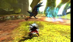 Monster Hunter XX s'illustre en vidéo