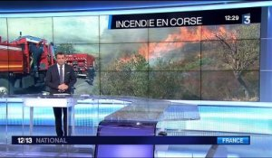 Corse : la sécheresse, principale cause d'incendies