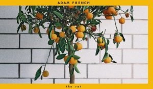 Adam French - The Rat