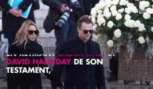 Laura Smet fan de son frère David Hallyday sur Instagram (photo)