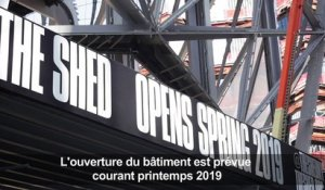 Visite du nouveau centre d'arts au Shed à New York
