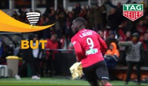 But Alexandre MENDY (46ème) / EA Guingamp - AS Monaco - (2-2) - (EAG-ASM) / 2018-19