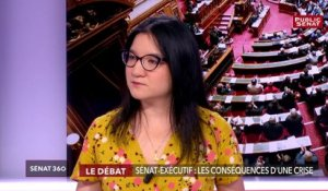 Crise institutionnelle / retraites / Europe - Sénat 360 (25/03/2019)