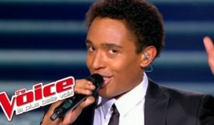 Franck Sinatra - New York New York | Stéphan Rizon | The Voice France 2012 | Prime 4