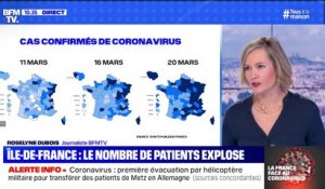 Coronavirus: le nombre de patients explose en Île-de-France
