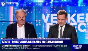 Covid-19 : deux virus mutants en circulation - 01/01