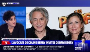 "Affaire Richard Berry: l'avocate de Coline Berry-Rojtman dénonce une ""confiscation de la parole insupportable"""