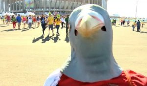 "Football - Les supporters chambrent ce ""pigeon"" de CR7"