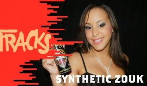 Synthetic Zouk - Tracks ARTE