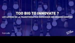 Too Big to Innovate (1) : Keynote by Augustin de Romanet (Futur en Seine 2015)