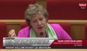 La question de la sénatrice Marie-Christine Blandin à Vincent Bolloré : Paratonnerre, fusible et censure