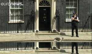 Le chat Larry reste au 10, Downing Street