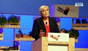 Marine Le Pen : Julie Gayet contre le Front national, elle rejoint le rassemblement (Photo)