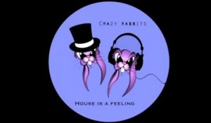 Crazy rabbits - House is a feeling