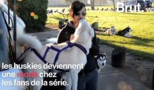 "Un acteur de ""Game of Thrones"" s'alarme de l'abandon de masse de huskies"