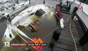 Ouragan Harvey : déluge sur le Texas