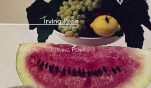 Irving Penn reçoit Vogue