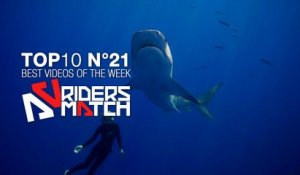 Oseriez-vous plonger avec Ocean Ramsey et ses requins ? | BEST OF THE WEEK n°21 - Riders Match