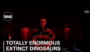 Totally Enormous Extinct Dinosaurs Boiler Room Ray-Ban x Boiler Room Weekender | DJ Set
